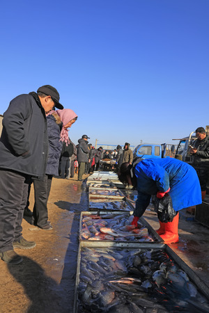 Luannan County - February 1: customers buying fresh fish in the rural market, February 1, 2016, luannan county, hebei province, China.
