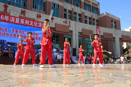 tangshan city: Tangshan - August 8: Young martial arts performance in the park, August 8, 2016, tangshan city, hebei province, China Editorial