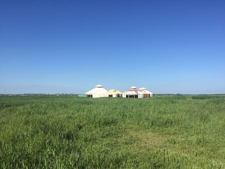hebei: grassland holiday village mongolian yurt, zhangjiakou, hebei province, China