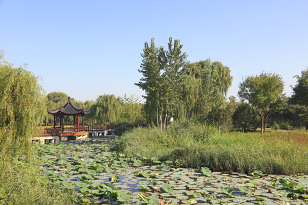 Chinese architectural style pavilion 版權商用圖片