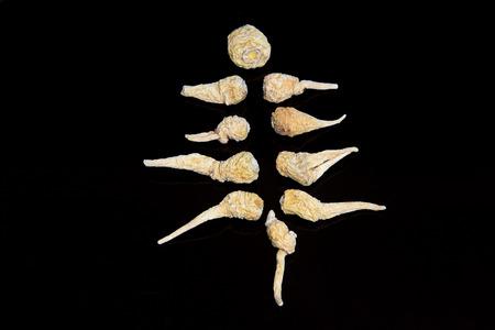 maca: Herbal Lepidium meyenii Walp on a black background Stock Photo