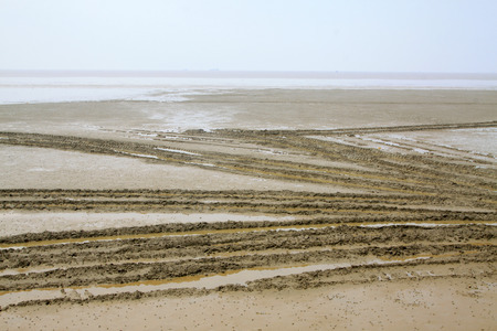 beach after low tide