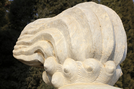 Animal tail stone carving