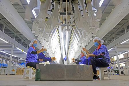 Tangshan City - October 19, 2016: Tangshan Zhonghong NBR medical gloves production line, Tangshan City, Hebei, China, China Editorial
