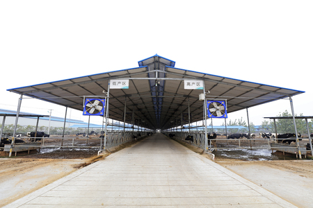 Sunshade shed of dairy farm