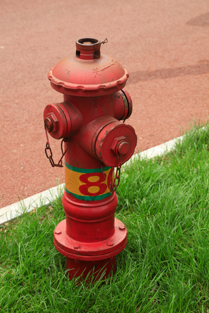 fire hydrant in the park