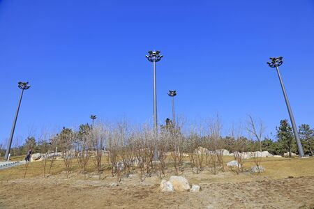 spotlights in the park