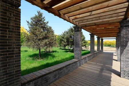 corridor in the park