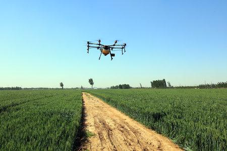 Agricultural UAVs pesticide wheat on a farm, China