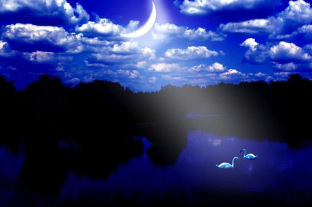 Swans at a moonlight Stock Photo - 7895010