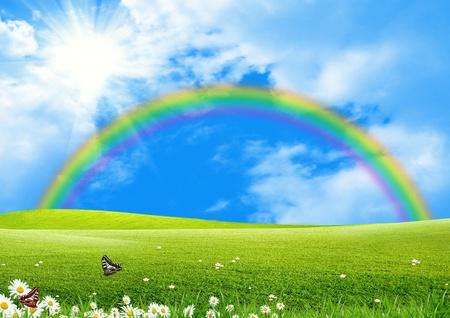 campo de margaritas: Arco iris en un verde glade