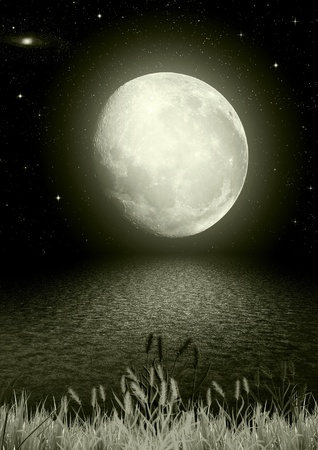 The full moon in the night Stock Photo - 9420752