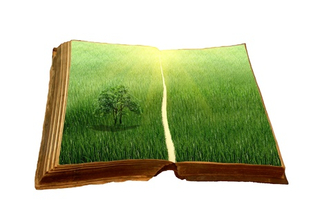 old book with a landscape Stock Photo - 9728043
