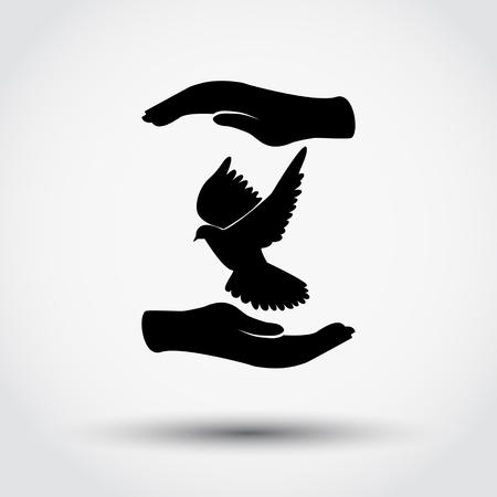 peace concept: Hands holding dove. Peace concept.