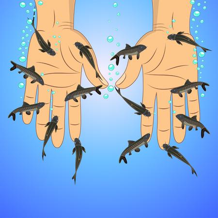 Fish spa (Garra rufa)