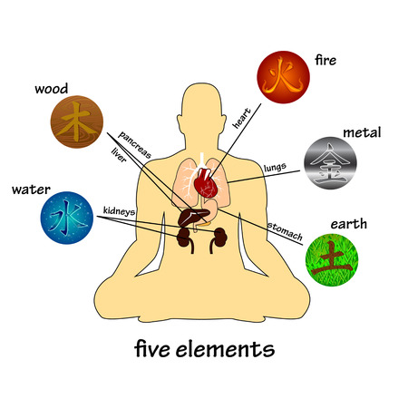 Five elements and human organs. Silhouette of sitting man 免版税图像