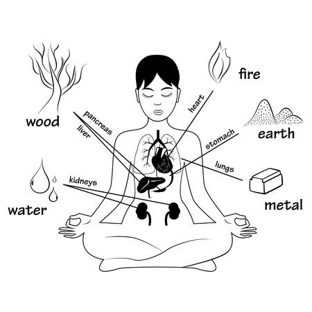 Vijf elementen en menselijke organen. Silhouet van de vergadering in meditatie stelt vrouw Stock Illustratie