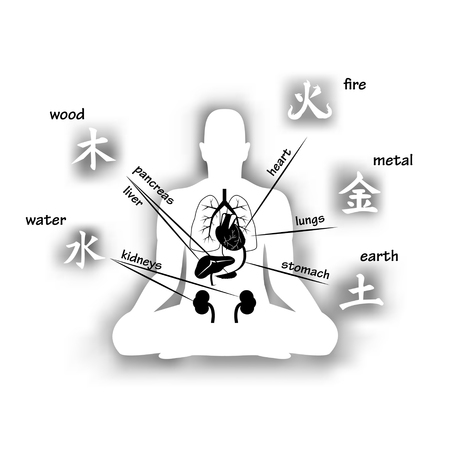 five elements: Five elements and human organs. Silhouette of sitting man Illustration
