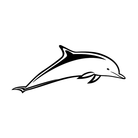 game of pool: Vector illustration of dolphin.
