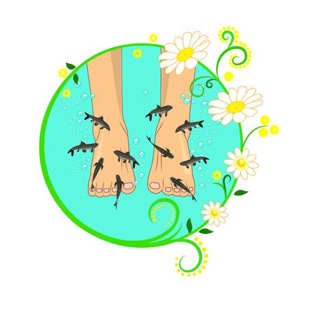 kangal: Fish spa (Garra rufa)
