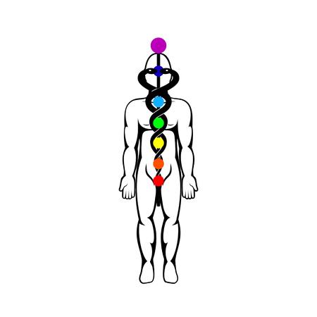 Kundalini energy vector illustration. Illustration