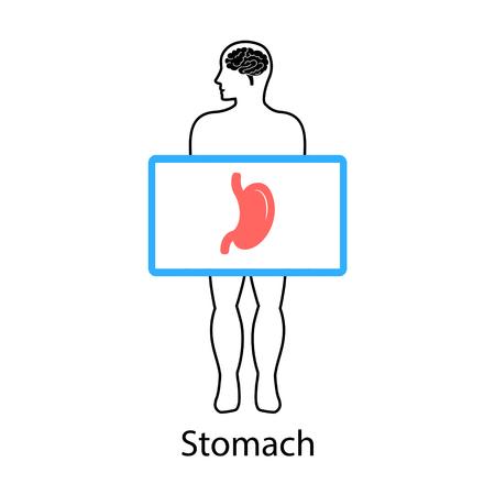 Stomach on screen. Vector illustration. Illustration