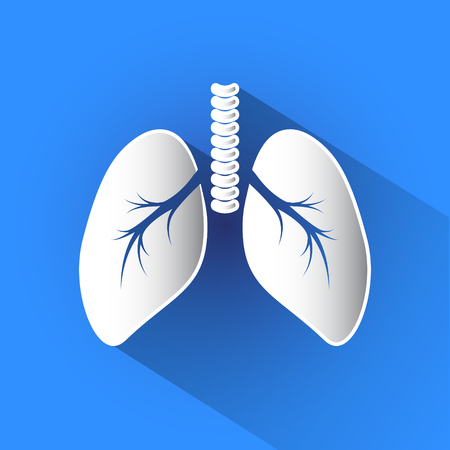Lungs vector icon in blue background.