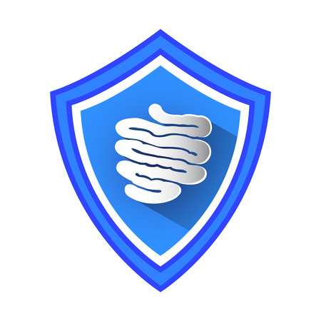 Small Intestine Protection Shield Vector Icon.