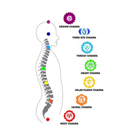 Man silhouette with active shining chakras isolated on the white background vector illustration Vektorgrafik