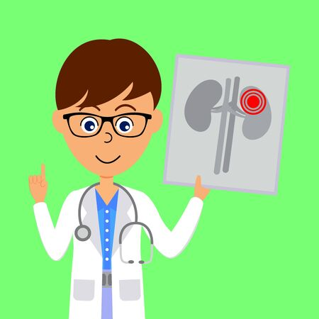 Cartoon male doctor character showing image of unhealthy kidneys. Healthcare concept. Flat vector illustration.