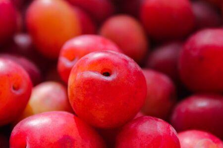 Plum fruit background Foto de archivo - 130261201