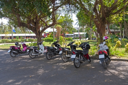 mopeds: Different mopeds or scooters on  parking under  tree, Thailand  Stock Photo