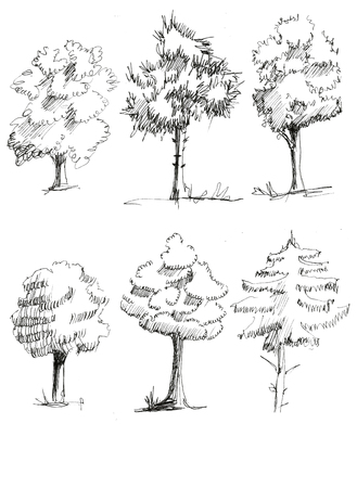 Set 6 ink sketch hand draw trees isolated on white background. illustration
