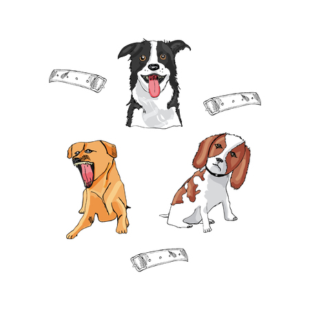 Set with dogs. Hand drawn and colored sketch. Vector illustration. Иллюстрация