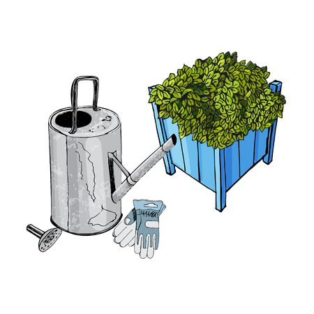Composition with rusty watering can, gloves and blue garden wood pots with ajuga flowers. Sketch. Vector illustration. Hand drawn. Иллюстрация