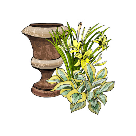 Retro rusty garden vase with hosta and hemerocallis flowers. Hand drawn and colored sketch isolated on white background. Vector illustration. Иллюстрация