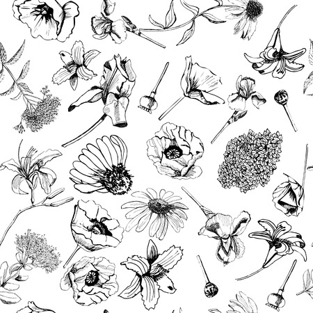 Seamless pattern with hand drawn graphic sketch with summer flowers for flower garden. Papaver, echinacea, iris, ajuga, sedum, eupatorium. Vector illustration.