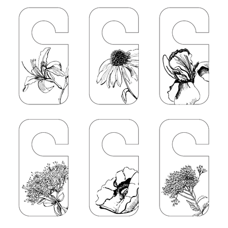 Set tags with graphic sketch of summer flowers iris, sedum,papaver, echinacea, eupatorium. Vector illustration