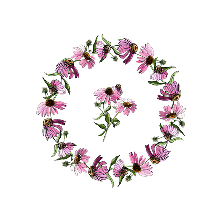 Hand drawn colored sketch with wreath of echinacea flowers and bouquet isolated on white background. Vector illustration.