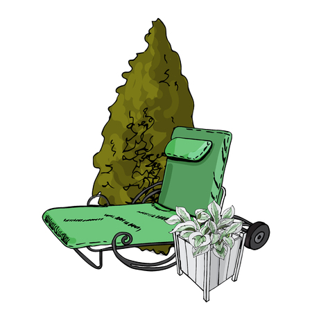 Decorative composition with green lounger, thuja tree and hosta flowers in white wood pots. Hand drawn  sketch isolated on white background.  vector illustration. Фото со стока - 99769800