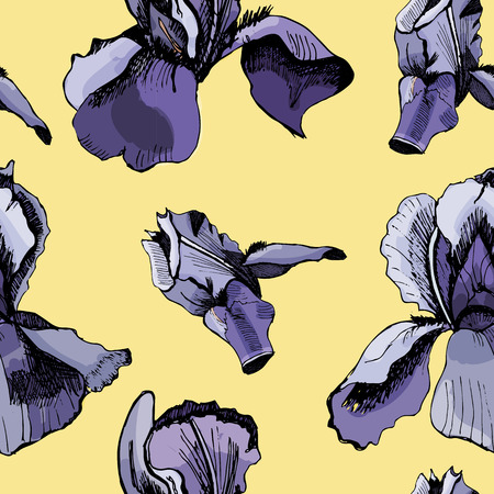 Floral seamless pattern with hand drawn graphic and colored sketch with iris flowers on yellow background.