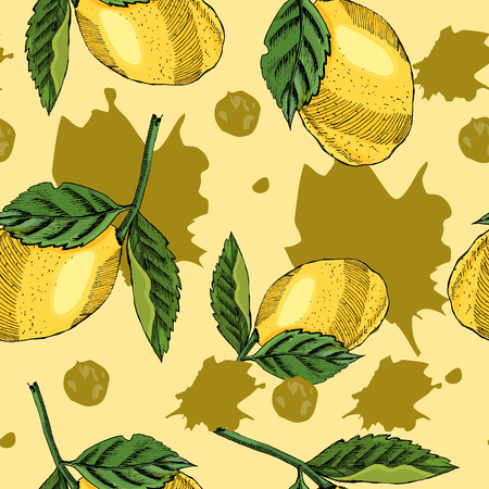 Seamless pattern of hand drawn graphic and colored sketch with lemon and abstract spots and leaves on yellow background. vector illustration