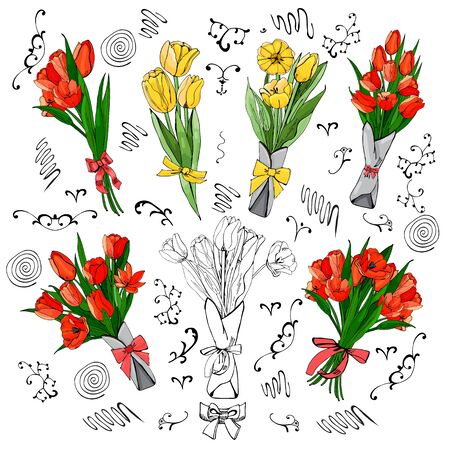 Set of red and yellow tulips bouquets. Hand drawn colored  sketch with tulip flowers and  leaves isolated on white background.Vector illustration.