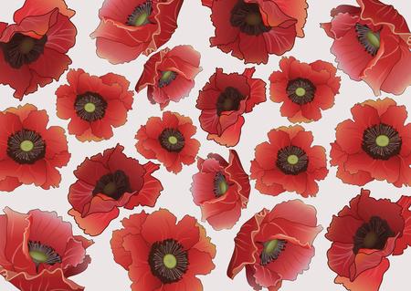 voluminous: Bright poppy background.