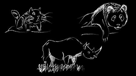 Vector illustration Rhinoceros panda hamster drawn chalk on a black background Illustration
