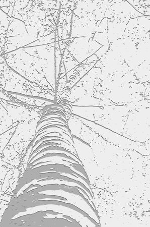 Vector illustration in halftone style. Image of birch trunk, branches. For background and textures Banque d'images - 126424173