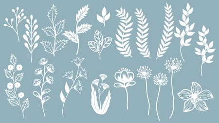 Set template for laser cutting and Plotter. Flowers, leaves for decoration. Vector illustration. Sticker set. plotter and screen printing. serigraphy Çizim