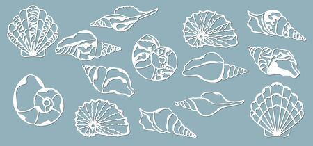 Shells of the sea. Laser cutting. Craft paper for decoration. Plotter, screen printing..