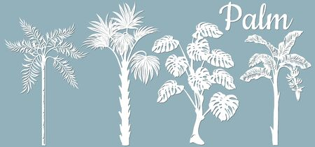 Set, tropical palm trees, paper trees. A trunk with leaves. The silhouette of palm trees. For scrapbooking and laser cutting. Plotter cutting..