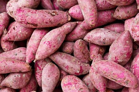 Fresh purple sweet potato